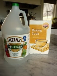 Photo of Vinegar and Baking Soda